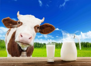 Animal health products