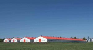 Animal housing & farmequipment