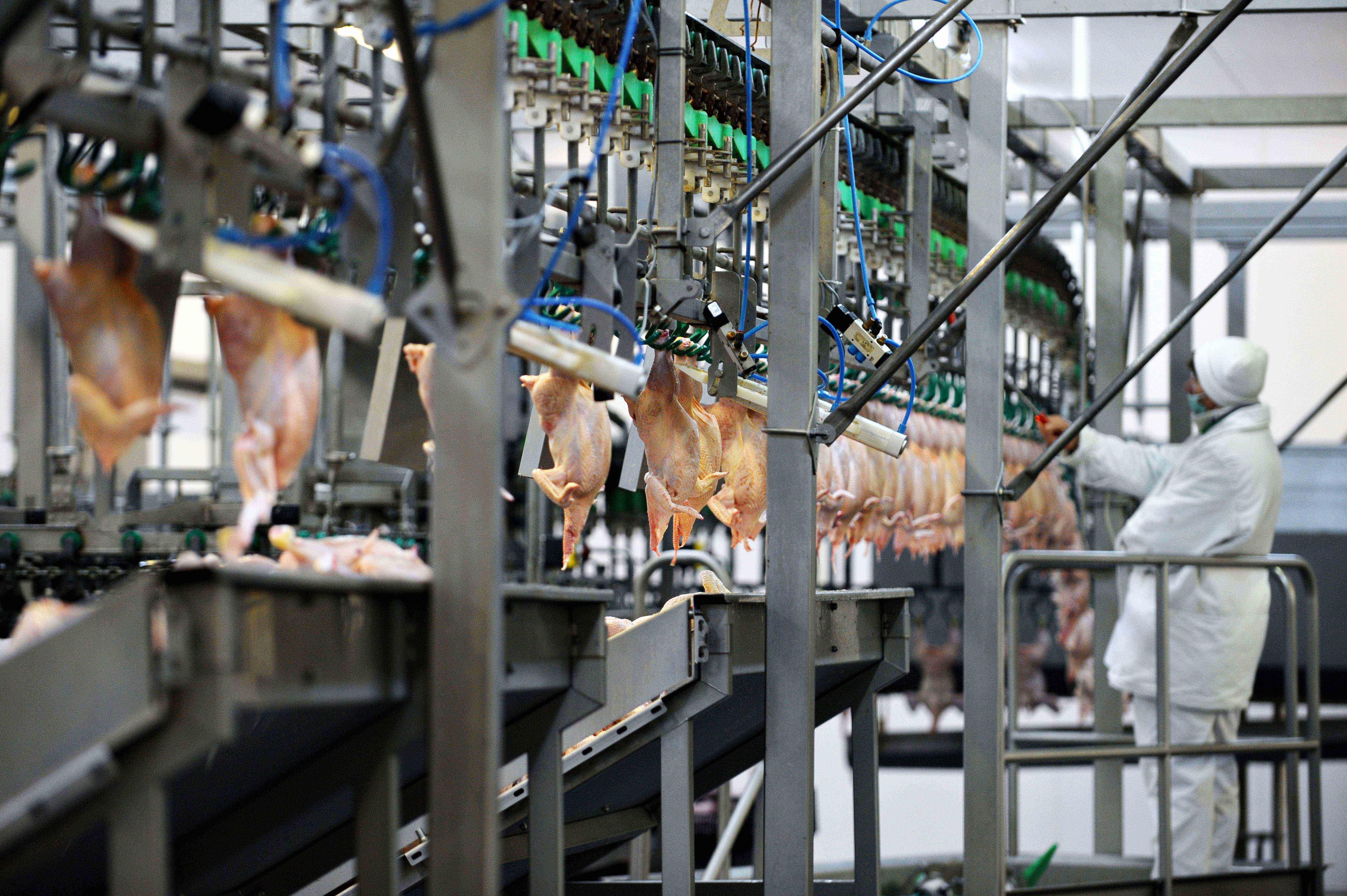 Farm industry equipment supplier